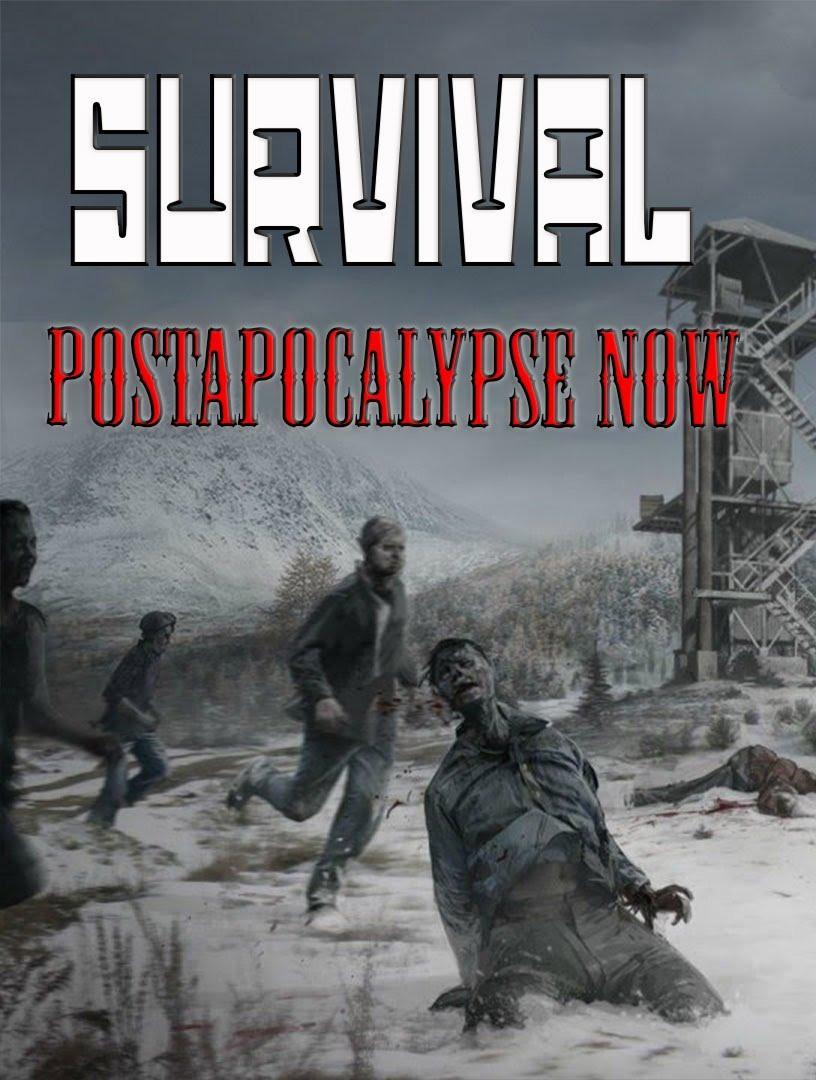 Survival: Postapocalypse Now (2015) PC
